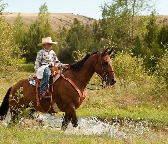 Lezioni di equitazione per bambini